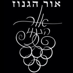 or-haganuz-logo.c86c27660fd1629d56fe247af69a2454